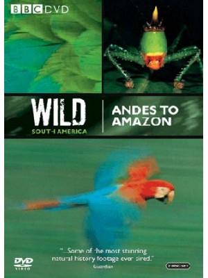 ft083 :สารคดี Wild South America 2 แผ่นจบ