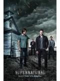 se1119: ซีรีย์ฝรั่ง  Supernatural Season 9ล่าปริศนาเหนือโลก ปี 9 [ซับไทย]  6 แผ่นจบ