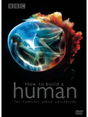 ft106 : สารคดี BBC:How to build a HUMAN DVD 1 แผ่น