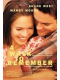 EE1632 :A Walk To Remember  DVD1 แผ่น