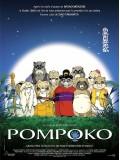 ct0157 : การ์ตูน Studio Ghibli : Pom Poko  Master 1 แผ่น