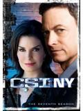 se0764 : ซีรีย์ฝรั่ง CSI : New york season 7 ไขคดีปริศนานิวยอร์ค ปี 7 [เสียงไทย+eng] DVD 6 แผ่นจบ