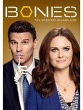 se1241 : ซีรีย์ฝรั่ง Bones Season 9  [พากษ์ไทย] DVD 5 แผ่นจบ