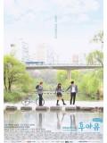 krr1247 : ซีรีย์เกาหลี School 2015: Who Are You (ซับไทย) 4 แผ่น