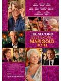 EE1704: The Second Best Exotic Marigold Hotel โรงแรมสวรรค์ อัศจรรย์หัวใจ 2 Master 1 แผ่น