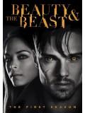 se1296 : ซีรีย์ฝรั่ง Beauty And The Beast Season 1 [ซับไทย] 8 แผ่น
