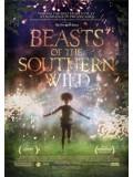 EE0224 : Beasts of The Southern Wild ฮีโร่น้อยฝ่ามรสุมชีวิตเขื่อนกักน้ำ (ซับไทย) Master 1 แผ่น