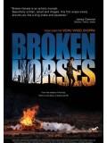 EE1773 : Broken Horses เส้นทางโหด สายเลือดระห่ำ Master 1 แผ่น