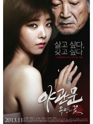 km074 : หนังเกาหลี Door To The Night รัก | หลอน | ซ่อนเร้น DVD 1 แผ่น