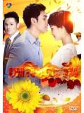 st1185 : เพลิงตะวัน DVD 4 แผ่น