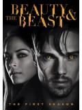 se1391 : ซีรีย์ฝรั่ง Beauty And The Beast ปริศนารัก เทพบุตรอสูร ปี 1 [พากย์ไทย] 5 แผ่น