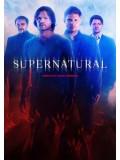 se1418 : ซีรีย์ฝรั่ง Supernatural Season 10 [ซับไทย] 6 แผ่น
