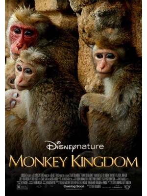 ft128 : สารคดี Monkey Kingdom อาณาจักรลิง จากป่าไม้สู่ป่าเมือง [ซับไทย] DVD 1 แผ่น