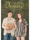 st1243 : วิมานเมขลา 2559 DVD 4 แผ่น