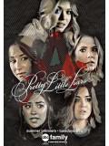 se1475 : ซีรีย์ฝรั่ง Pretty Little Liars Season 6 [ซับไทย] 5 แผ่น
