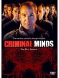se1479 : ซีรีย์ฝรั่ง Criminal Minds Season 1 ทีมแกร่งเด็ดขั้วอาชญากรรม ปี 1 [พากย์ไทย] 5 แผ่น