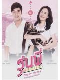 st1293 : รุ่นพี่ Secret Love ตอน Puppy Honey DVD 1 แผ่น