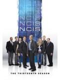 se1534 : ซีรีย์ฝรั่ง NCIS Season 13 (พากษ์ไทย) 5 แผ่น