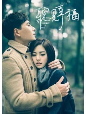TW211 : ซีรีย์ไต้หวัน Someone Like You รักครั้งใหม่ หัวใจอลเวง (พากย์ไทย) 7 แผ่น