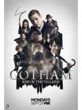 se1565 : ซีรีย์ฝรั่ง Gotham Season 2 (พากย์ไทย) 5 แผ่น
