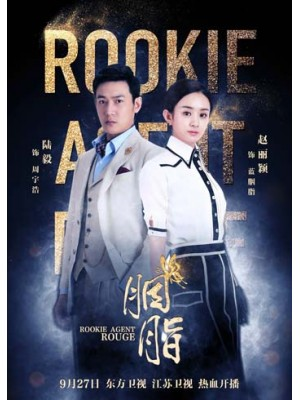CH788 : Rookie Agent Rouge (ซับไทย) DVD 8 แผ่น