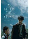 jm073 : After the Storm รักได้มั้ย พ่อคนนี้ DVD 1 แผ่น