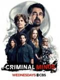 se1632 : ซีรีย์ฝรั่ง Criminal Minds Season 12 (ซับไทย) 5 แผ่น