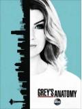 se1637 : ซีรีย์ฝรั่ง Grey s Anatomy Season 13 (ซับไทย) 5 แผ่น