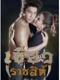 st1401 : เขี้ยวราชสีห์ DVD 4 แผ่น