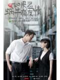 TW219 : ซีรีย์ไต้หวัน When a Snail Falls in Love (ซับไทย) DVD 3 แผ่น