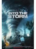 EE1330 : Into The Storm โคตรพายุมหาวิบัติกินเมือง DVD 1 แผ่นจบ