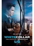 Se1184: ซีรีย์ฝรั่ง  White Collar Season 6 [ซับไทย]  DVD 2 แผ่นจบ