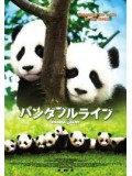 jm016 : หนังญี่ปุ่น Panda Diary อู๊ลั่นล้า แพนด้ามาเป็น10 [พากย์ไทย] DVD 1 แผ่นจบ