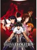 ct0133 : การ์ตูน Neon Genesis Evangelion : Limited Edition อีวานเกเลี่ยน มหาสงครามวันพิพากษา DVD 7 แผ่น