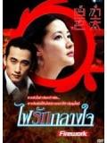 kr321 : ซีรีย์เกาหลี Love as Fireworks ไฟรักกลางใจ [พากย์ไทย] DVD 5 แผ่น