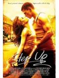 P114 : Step Up 1 สเต็ปโดนใจ หัวใจโดนเธอ DVD MASTER 1 แผ่นจบ