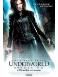 P156 : Underworld : Awakening สงครามโค่นพันธุ์อสูร 4 กำเนิดใหม่ราชินีแวมไพร์  DVD Master 1 แผ่นจบ