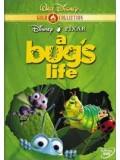 am0079 : หนังการ์ตูน A Bug's Life ตัวบั๊กส์ หัวใจไม่บั๊กส์ DVD 1 แผ่น