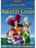 am0082 : หนังการ์ตูน Peter Pan in Return to Never Land DVD 1 แผ่น