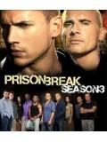 se0034 : ซีรีย์ฝรั่ง Prison Break แผนลับแหกคุกนรก ปี 3 DVD Master [2ภาษา] 4 แผ่นจบ