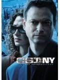 se0307 : ซีรีย์ฝรั่ง CSI : New york season 4 ไขคดีปริศนานิวยอร์ค ปี 4 [เสียงไทย+eng] DVD 6 แผ่นจบ
