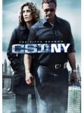 se0509 : ซีรีย์ฝรั่ง CSI : New york season 5 ไขคดีปริศนานิวยอร์ค ปี 5 [เสียงไทย+eng] DVD 7 แผ่นจบ