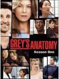 se0037 : ซีรีย์ฝรั่ง Grey's Anatomy Season 1 แพทย์มือใหม่หัวใจเกินร้อย ปี 1 [ซับไทย] 2 แผ่นจบ