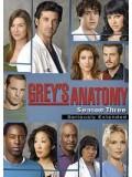 se0039 : ซีรีย์ฝรั่ง Grey's Anatomy Season 3 แพทย์มือใหม่หัวใจเกินร้อย ปี 3 [ซับไทย] 7 แผ่นจบ