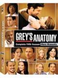 se0457 : ซีรีย์ฝรั่ง Grey's Anatomy Season 5 แพทย์มือใหม่หัวใจเกินร้อย ปี 5 [ซับไทย] 6 แผ่น