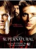 se0425 : ซีรีย์ฝรั่ง Supernatural Season 3 ล่าปริศนาเหนือโลก ปี 3 [พากย์ไทย] 2 แผ่นจบ
