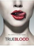 se0242 : ซีรีย์ฝรั่ง True Blood Season 1 หนุ่มแวมไพร์กับยัยสาวเสิร์ฟ ปี 1[ซับไทย] 6 แผ่นจบ