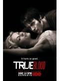se0410 : ซีรีย์ฝรั่ง True Blood Season 2 แวมไพร์พันธุ์ใหม่ ปี 2 [ซับไทย] 6 แผ่นจบ