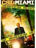 se0765 : ซีรีย์ฝรั่ง CSI : Miami season 9 ไขคดีปริศนาไมอามี่ ปี 9 [พากย์ไทย] Master 6 แผ่นจบ