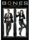 se0124 : ซีรีย์ฝรั่ง Bones Season 2 พลิกซากปมมรณะ ปี 2 [ซับไทย] 6 แผ่นจบ